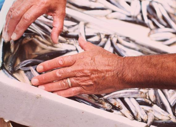 Antico mercato del pesce a Catania: la Pescheria